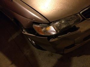 Poor Deer :(